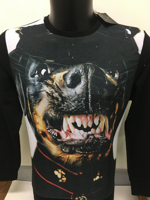Sweat-shirt chien