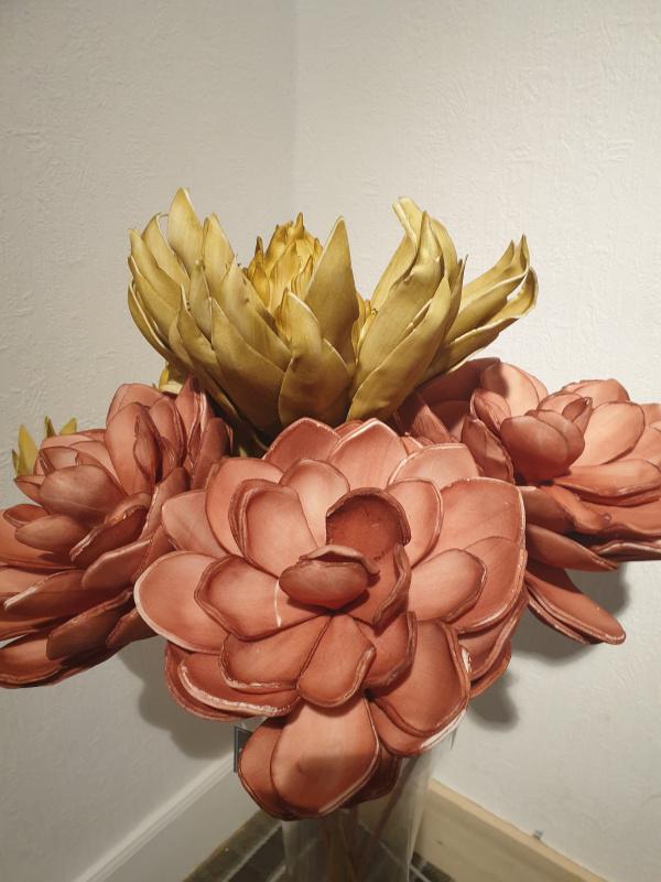 Fleurs EVA 16