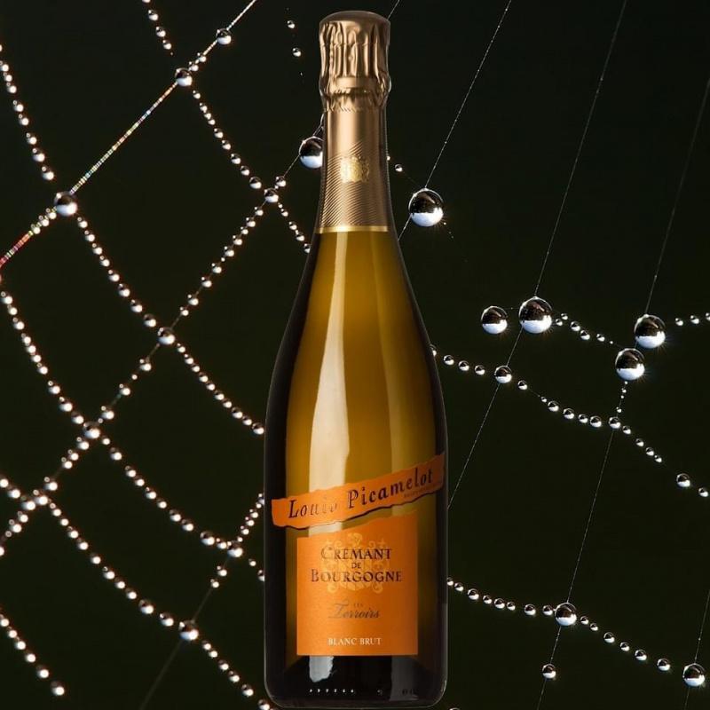 """Crémant de Bourgogne Blanc  """" Les Terroirs """" - Bouteille 75 cl"""