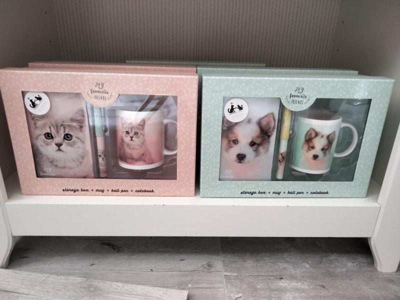 Box chat ou chien